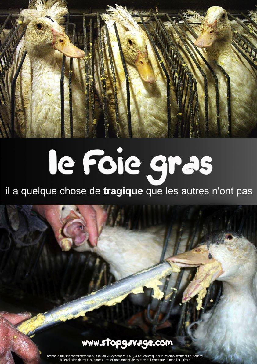 http://www.al-kanz.org/wp-content/uploads/2007/11/foie_gras_pmaf2.jpg