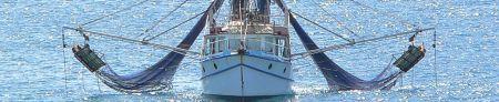 Le bateau casherisé