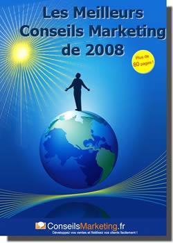 téléchargez l'ebook gratuit sur les meilleurs conseils marketing de l'année 2008