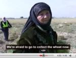 paysan-palestine