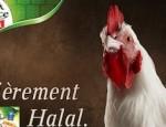 coq-halal