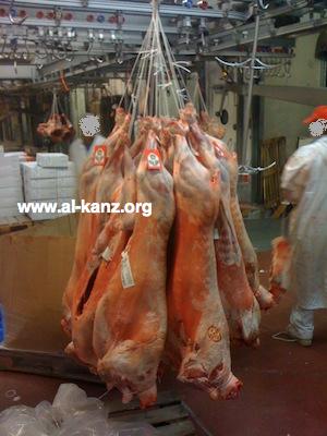 Faux moutons de l'Aïd à Rungis