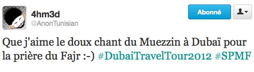 De retour de Dubaï (2)