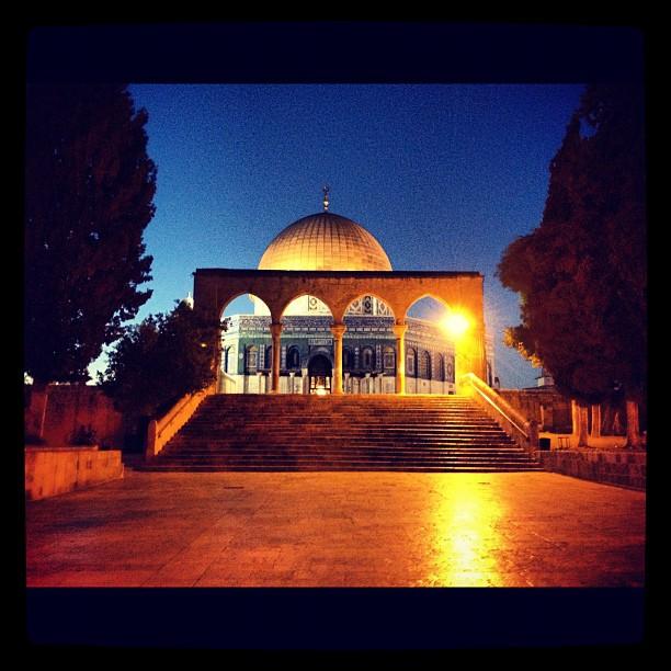 Solivr est en Palestine
