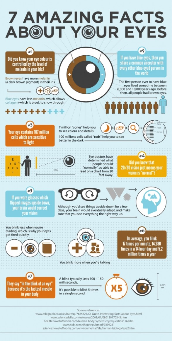 Infographie : le miracle de l'oeil