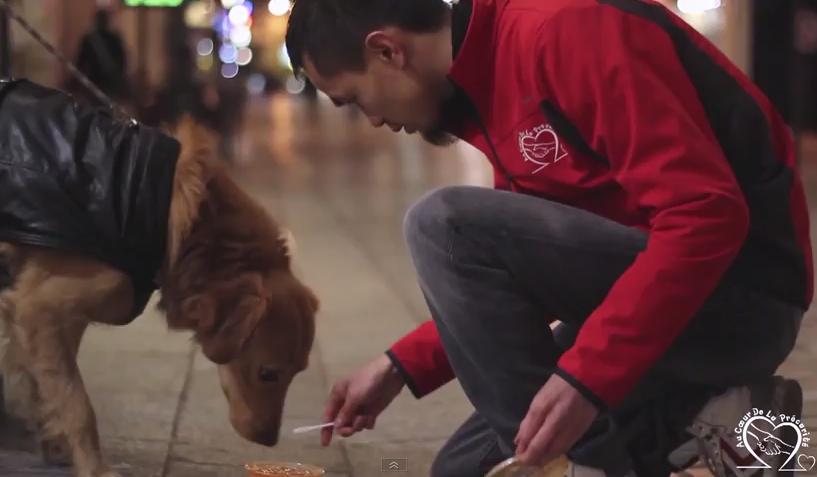 Un bénévole d'Adclp nourrit un chien dans la rue