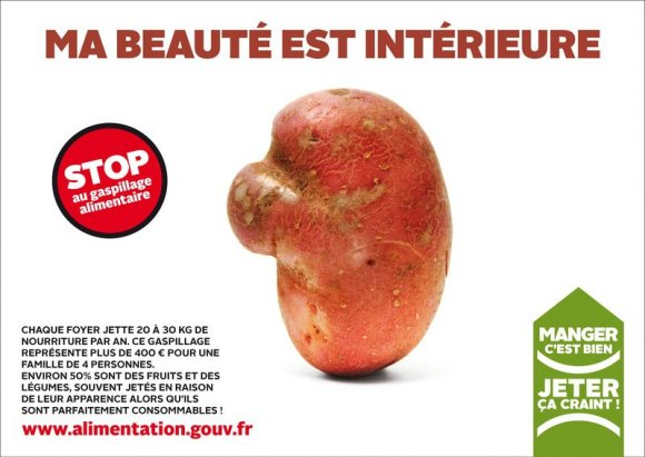 beaute-interieure-gaspillage-alimentaire