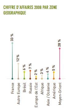 rapport annuel financier doux 2008
