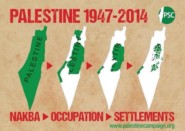 palestine 2014