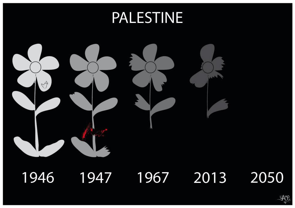 Yace dessine la Palestine