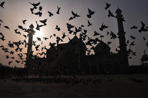 masjid jama inde