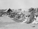 Musulmans Première et la Seconde Guerre