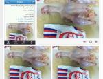 poulet doux non halal