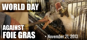 http://www.al-kanz.org/wp-content/uploads/2013/11/world-days-foie-gras-2-300x139.jpg