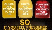pression fruits meilleur