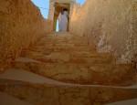 fatima talbi algerie