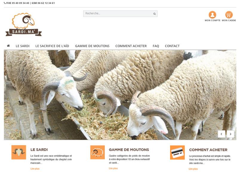 mouton par Internet sardi.jpg