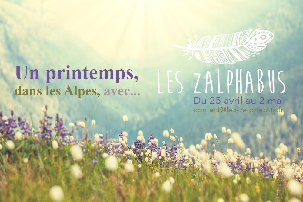 alpes zalphabus