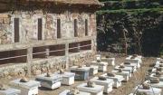 miel maroc encheres berberes