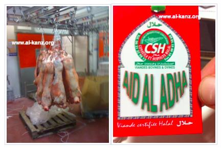 fraude mouton aïd al-adha rungis