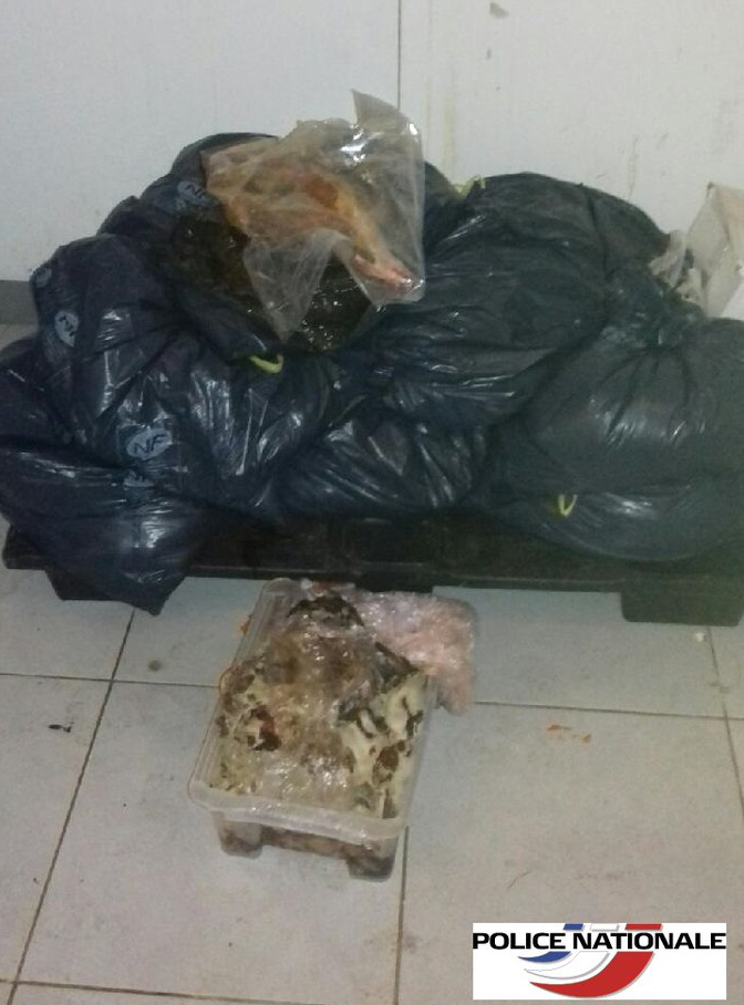 boucherie halal viande avariée